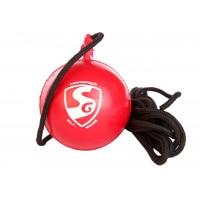 SG I Ball Cricket Hanging Ball