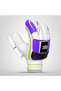 DSC Condor Raptor Cricket Batting Gloves