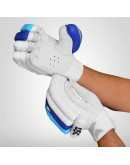 DSC Condor Surge Cricket Batting Gloves
