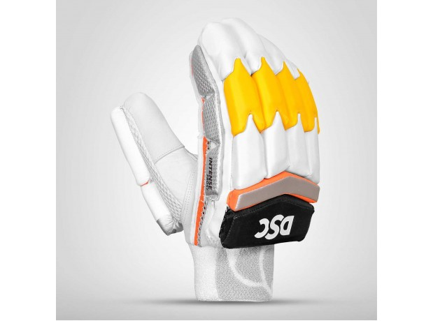 DSC Intense Frost Cricket Batting Gloves