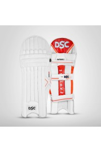 DSC Intense Rage Cricket Batting Legguard