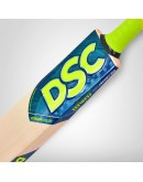 DSC Condor Winger English Willow Cricket Bat