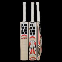 SS Master Kashmir Willow Cricket Bat