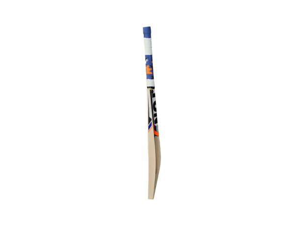 SS Ton Max Power Kashmir Willow Cricket Bat