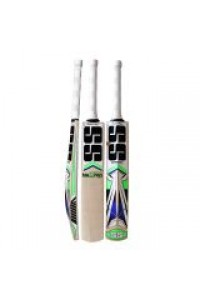 SS Master 100 Kashmir Willow Cricket Bat