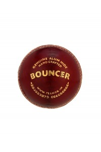 SG Bouncer Leather Cricket Ball Red