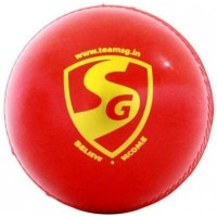 SG Everlast Synthetic Cricket Ball