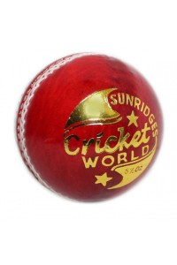 SS Cricket World 4 Piece Leather Cricket Ball Red Color