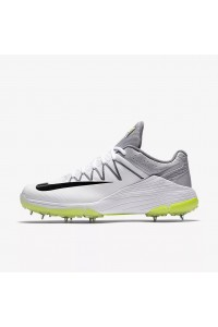 Nike Domain 2 Spikes Cricket Shoes