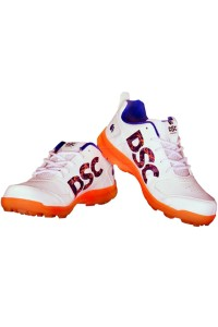 DSC Beamer Cricket Shoes